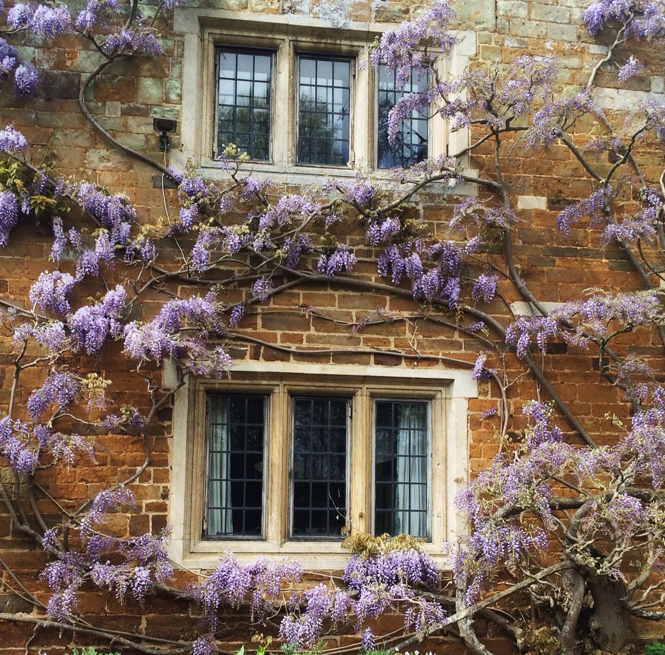 english gardens | Heaven Scent Gardens